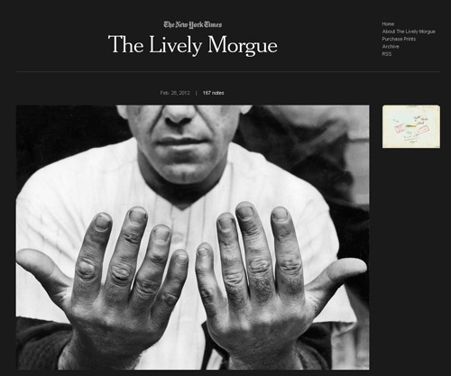 The Lively Morgue