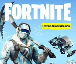 Fornite en PS4